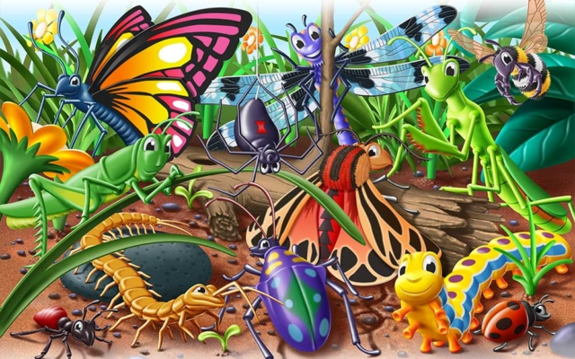 Colorful bugs gathered together